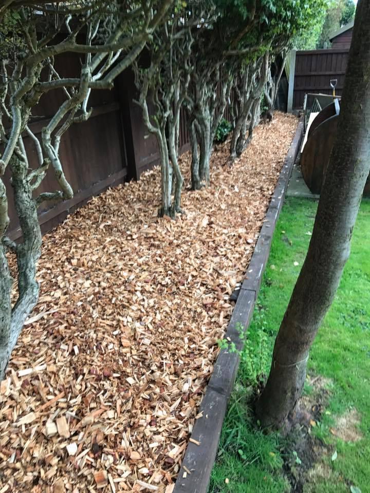 Bark in planters